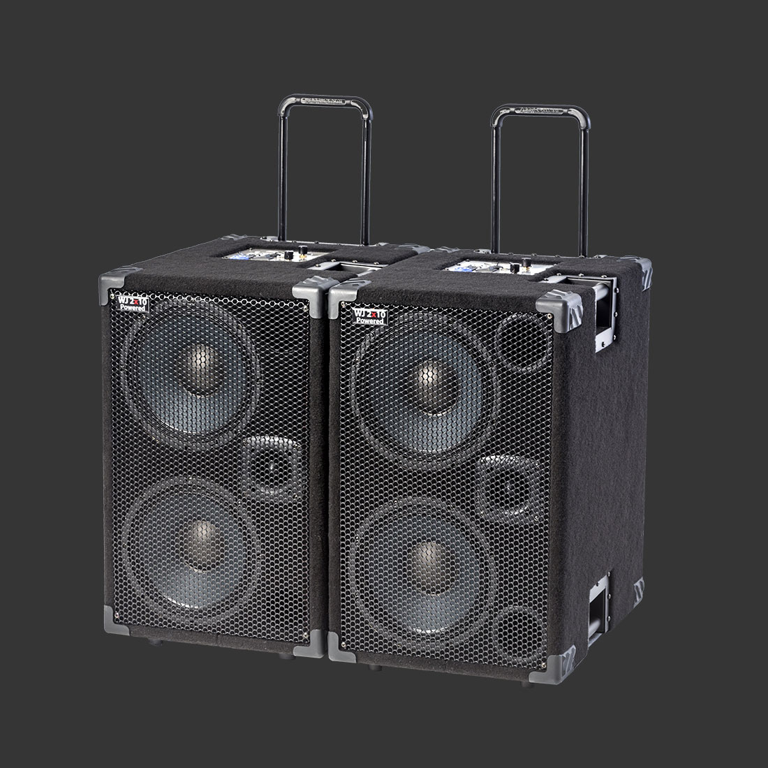 Wayne Jones Audio - Hi Powered, Hi End Bass Cabinets